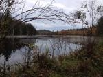 October Beaver Pond